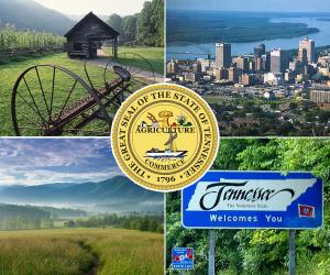 Tennessee va loans