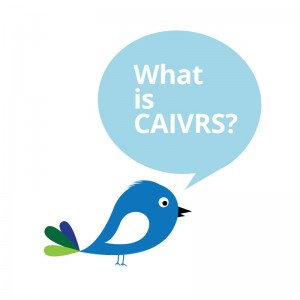 "bird asking ""what is caivrs"""