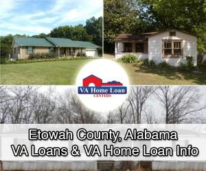 etowah county al homes for sale