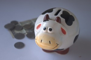 piggy-bank-390528_960_720