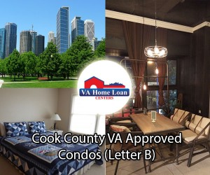 cook county letter b